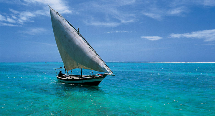 Moa14-sunway-safari-indian-ocean-inhambane-sailing-blue-beautiful-fish-dhow
