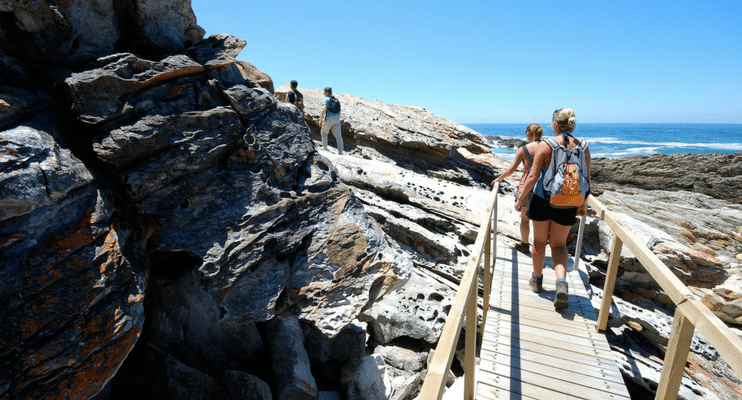 SAa17-sunway-safari-indafrica-south-africa-tsitsikamma-national-park-walkway-coastline0sea-explore