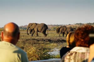 Sunway Safaris 3