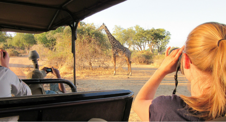 LL12-sunway-safari-indafrica-planning-zambezi-malawi-trade-route-south-luangwa-zambia-giraffe