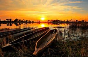 Sunway Safaris 4