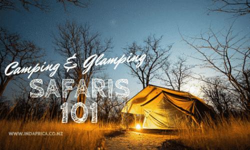 African Safaris 101: Camping & Glamping