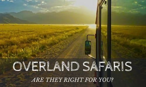 How to know if you are cut out for an overland safari?