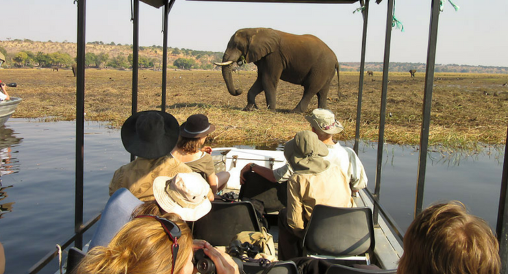 BTa14-Sunway-Botswana-africa-cruise-elephant-upclose-photography-safari-explore-intrepid-exodus