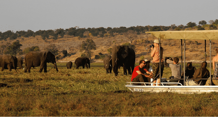 CVa21-sunway-safari-indafrica-botswana-chobe-river-cruise-elephants-close-lucky