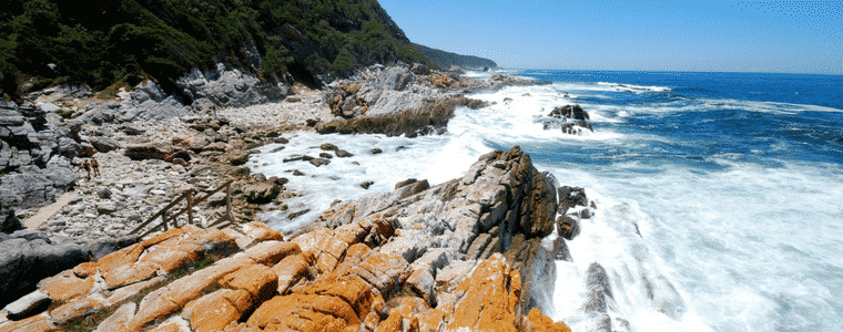 Tsitsikamma National Park, one of the jewels on South Africa's Garden Route.