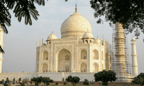 Taj Mahal Cleaning Update