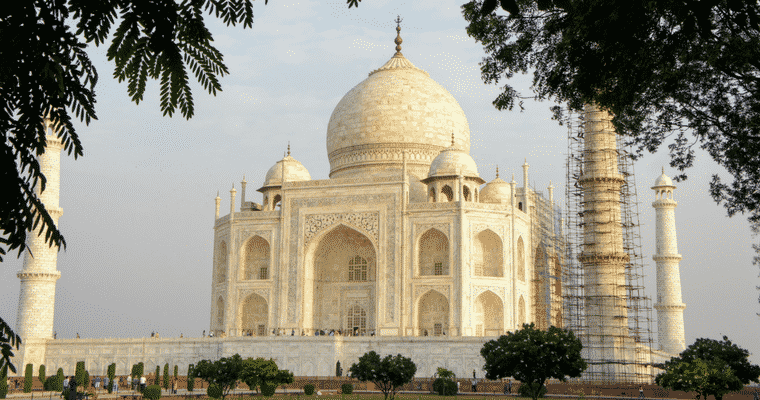 taj mahal cleaning