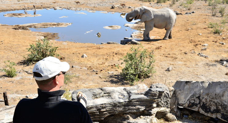 WVac15-Namibia-Etosha-Halali-waterhole-quiet-amazing-elephant-photography