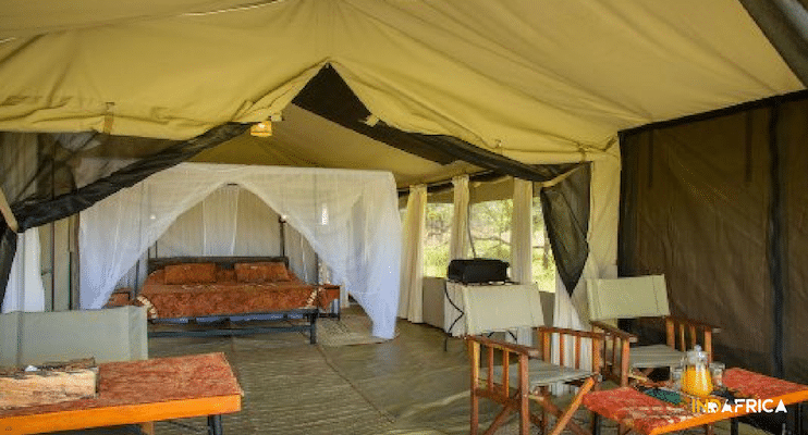Budget-Serengeti-Tanzania-Safari-Thorn-Tree-Camp-Indafrica-Travel