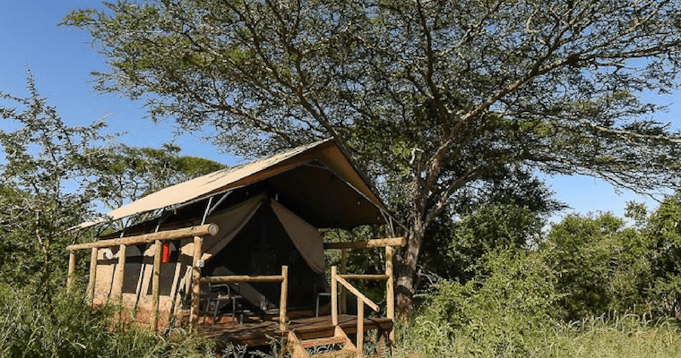 Zululand Lodge South Africa Msinene Nature Reserve