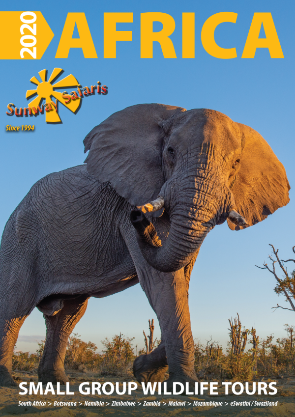 Get Your Copy of the 2020 Sunway Safaris Brochure